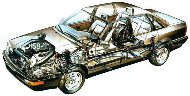 Audi V8 /- 1988 - Schnittzeichnung