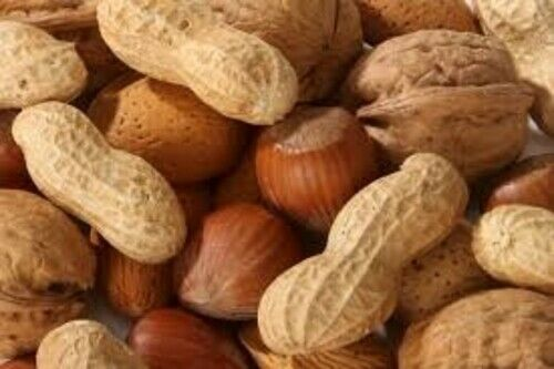 MIXED NUTS IN SHELL 1KG FREE POST INCLUDED