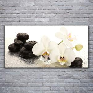 Wandbilder Glasbilder Druck auf Glas 120x60 Blume Pflanzen