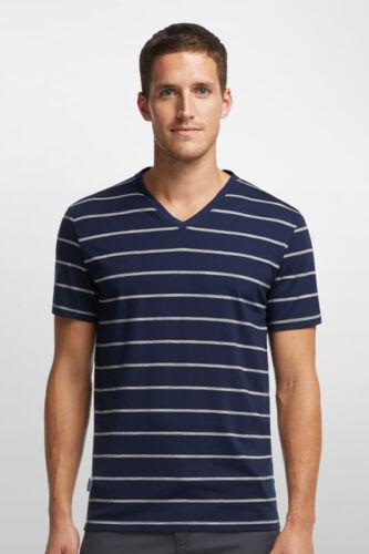 Details about  /Icebreaker tech Lite short-Sleeved Blue Stripe Men/'s Shirt V-Neck Special Offer
