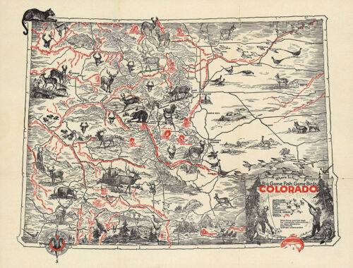 Pictorial Map Where to find Big Game Fish Game Birds in Colorado Wall Poster