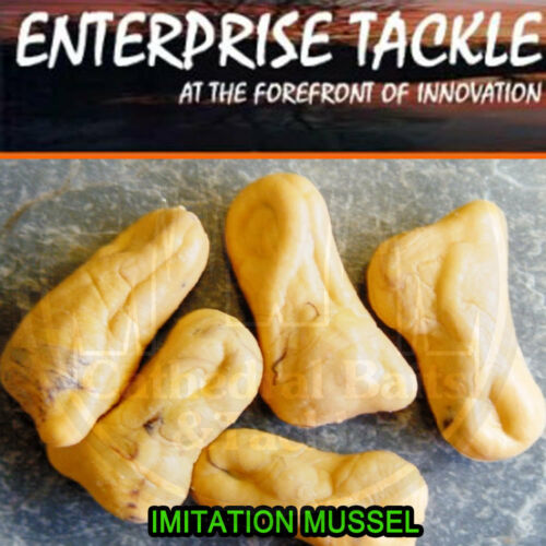 Enterprise Tackle Imitation Mussel Bait Carp Barbel Tench Coarse Fishing