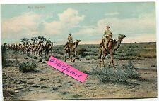 Postkarte um 1910: Deutsch-Südwest-Afrika, Kamelreiter-Kompanie beim Einsatz