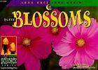 Plant Blossoms by David M Schwartz (Paperback / softback, 1998)