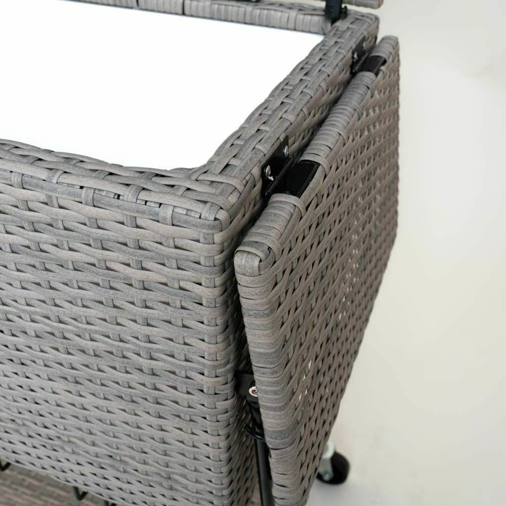 Trolley Refrigerator Cooler beistellwagen Drinks Trolley Drinks Cooler eisbox
