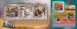 GU14214ab-Guinee-Guinee-2014-Felins-Chats-Chats-MNH-JEU