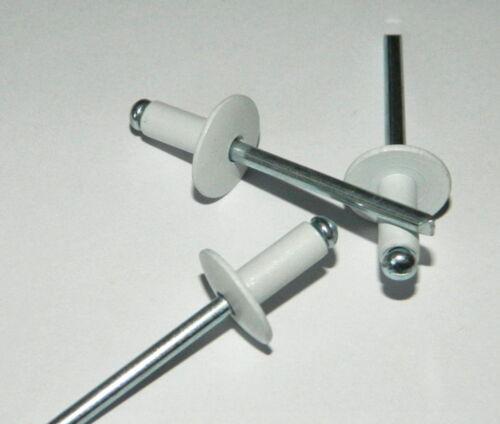 250 Stk Großkopf Blindnieten 5x12 Kopf 14mm  ALU//Stahl  RAL 9003  Weiss