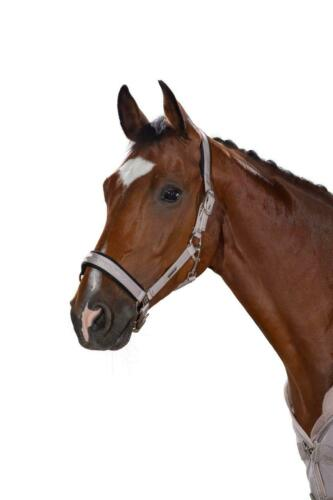 Limited Edition Eskadron Classic AW19 Double Pin Buckle Glossy Headcollar