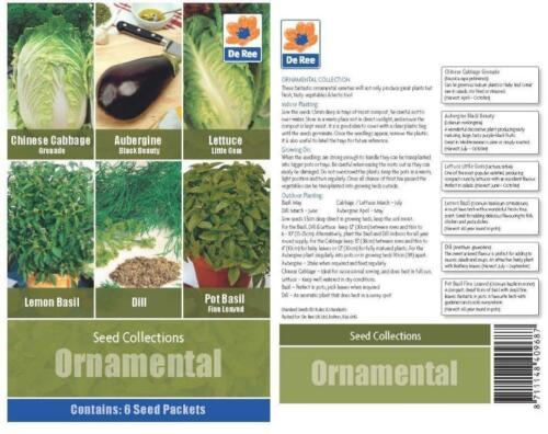 Ree Samen Sammlungen Sorte Samen Zier Sammlung Salat Kräuter
