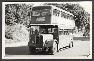 Bus-Photograph-postcard-size-MXX-242-destination-Chesham-NOT-A-POSTCARD