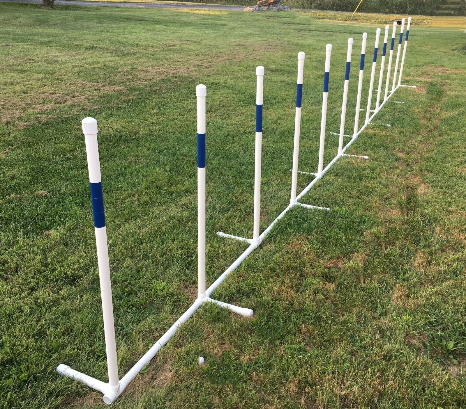 Dog agility weave poles - 12 poles, 1  pvc