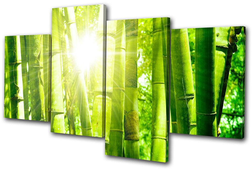 Floral Bamboo Shoots MULTI TELA parete arte foto stampa stampa stampa dcea38