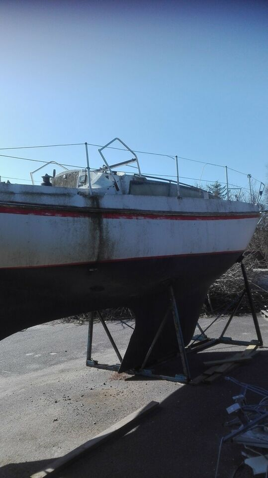 Anden type, Danboat 29 fod, Yanmar
