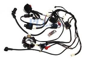 150cc 200cc wire harness wiring cdi assembly atv quad coolster rh ebay com