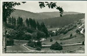 Ansichtskarte Altenbrak Harz Blick v. Bergfreibad zum Bösen Kleef (Nr.9618)
