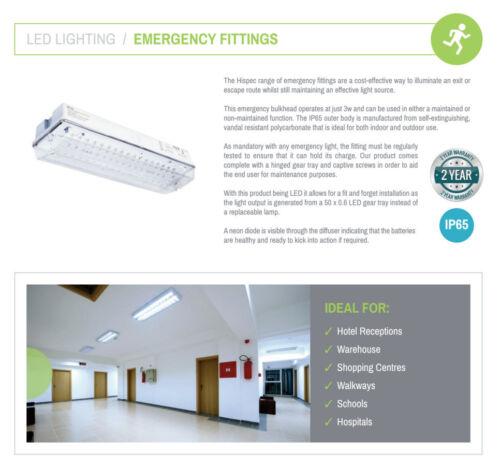 Universal IP65 LED 3 W Lumière cloison d/'urgence surface non maintenu EM3 Nm3