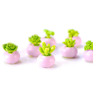 2PCS-Miniature-green-plant-In-pot-for-dollhouse-decoration-home-decor-wv