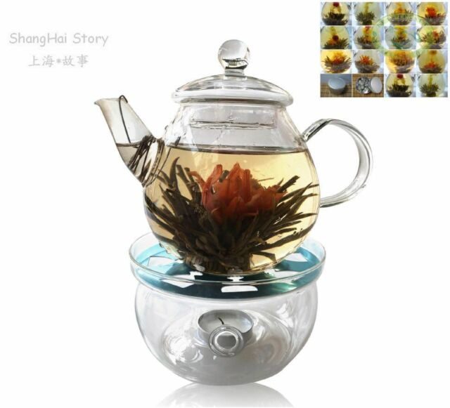 Glass Teapot 23oz+ warmer+12 Blooming Flower Tea Tin Gift
