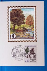 CHENE-PEDONCULE-ARBRE-FRANCE-CPA-Carte-Postale-Maximum-Yt-2386-C