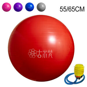 Sports Yoga Balls Bola Pilates Fitness Gym Balance Fitball Exercise Pilates Gym