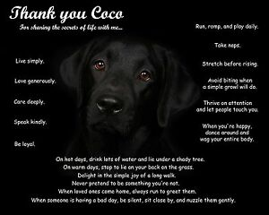 Details about Black Lab Wall Art Print-Unique Dog Lovers Gift  Idea-Personalized w/Pet's Name