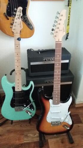 Individuell Tolle Farbauswahl Elektrogitarre E-Gitarre Massivholzkörper