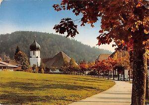 BT11291-Hinterzarten-hochschwarzwarzwald-Germany