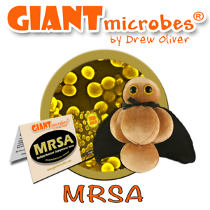 Giant Microbes Peluche originale di MRSA GIANTMICROBES virus cellule *** NUOVO *** Versione