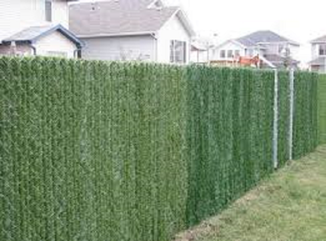 privacy hedge slats for 4 high chain link fence 10 linear foot