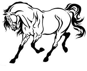 STENCILS-CRAFTS-TEMPLATES-SCRAPBOOKING-HORSE-STENCIL-21-A4-MYLAR