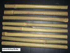 ** 8 ** Stangen a` 20 cm Bambus - Bamboo, Garnelen, Welse / Rückwand bauen *NEU*