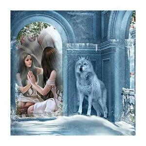 5D-DIY-Full-Drill-Diamond-Painting-Wolf-Women-Cross-Stitch-Embroidery-Kit-AU