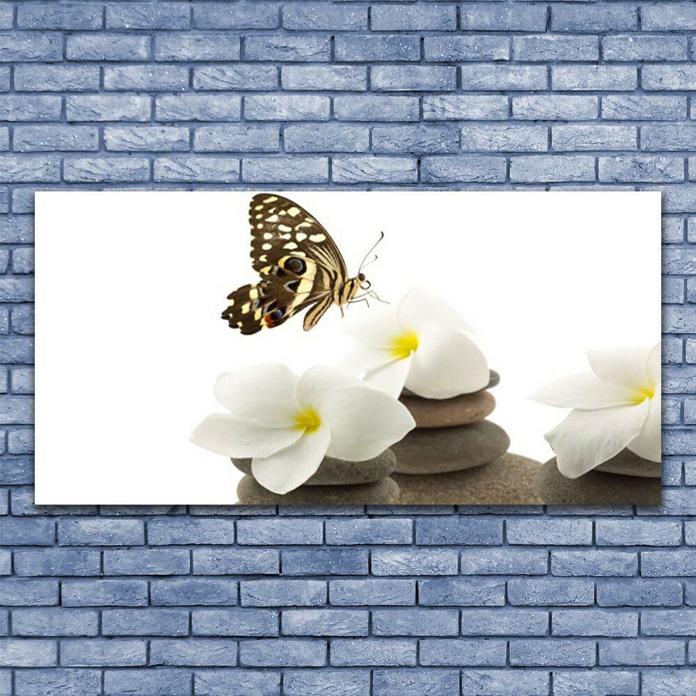 Print on Glass Wall art 140x70 Picture Image Butterfly Flower Stones Floral