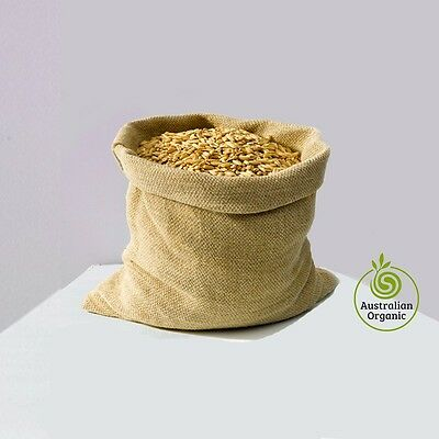 Wheatgrass Seeds Certified Organic  From 1kg to 10kg