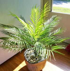 18 Leaves Plants Artificial Palm Tree Lifelike Bush
