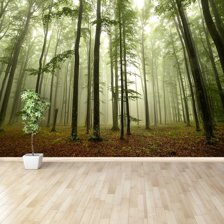 Fototapete Selbstklebend Einfach ablösbar Mehrfach klebbar Nebliger Wald