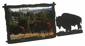 Buffalo-Bison-Western-Picture-Frame-3-5-034-x5-034-3-034-x5-034-H