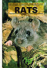 Rats by Susan Fox (Paperback, 1983)