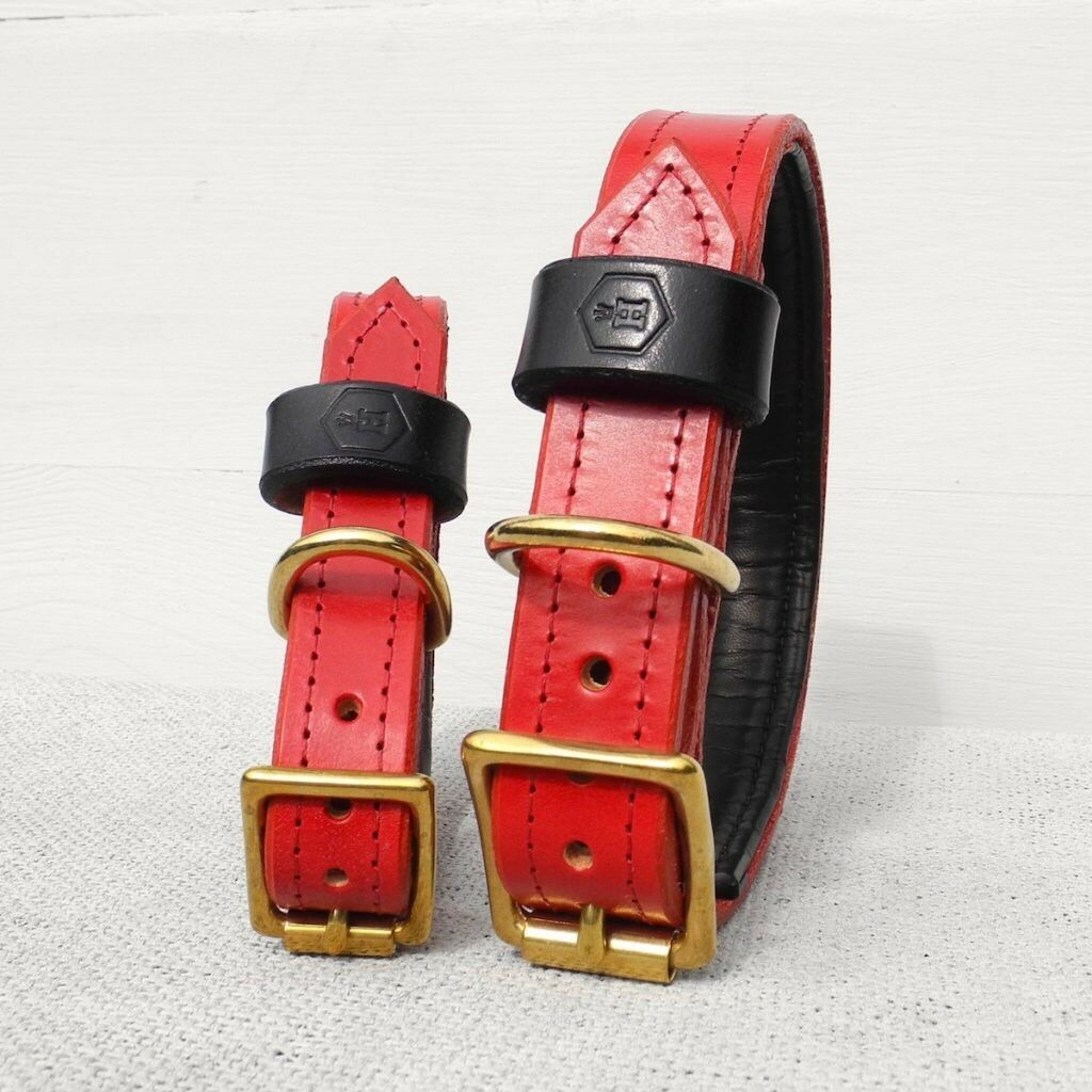 LUXURY PADDED BRIDLE LEATHER DOG COLLAR (OXBLOOD rot) X Large 44cm-52cm