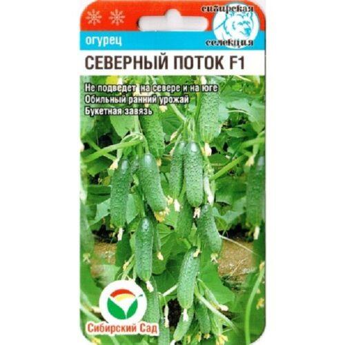 """Seeds cucumber /""""Nord stream/"""" F1 Siberian Garden// 7 PCs"""