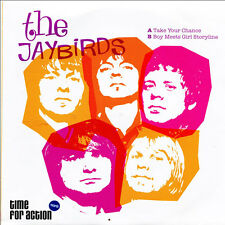 """THE JAYBIRDS Take Your Chance 7"""" . sonics rolling stones birds r&b psychedelic"""