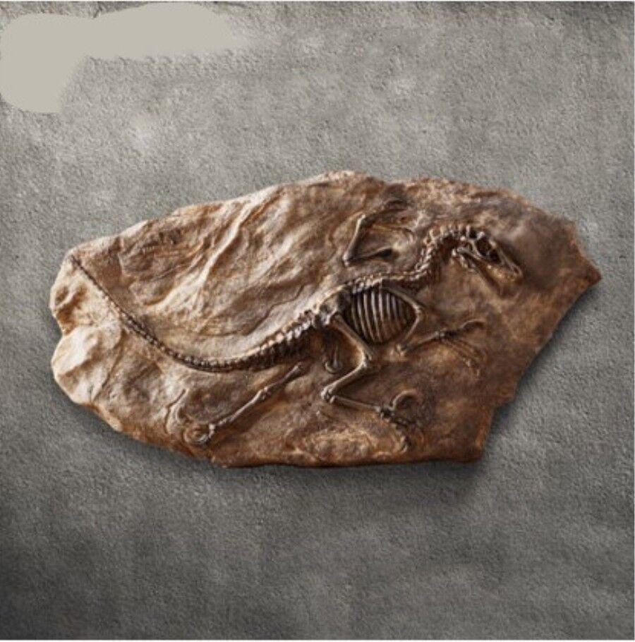 Tyrannosaurus rex dinosaurier fossilen mosasaurus retro - sammler dekor der
