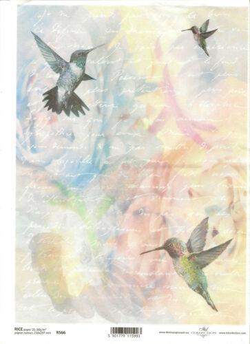 Papier de riz pour découpage scrapbooking lettre oiseau Humming-Bird ITD r566
