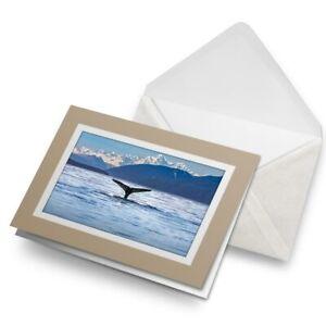 Greetings-Card-Biege-Alaskan-Landscape-Whale-Tail-3643