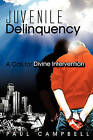 Juvenile Delinquency: A Call for Divine Intervention by Paul Campbell (Paperback, 2008)