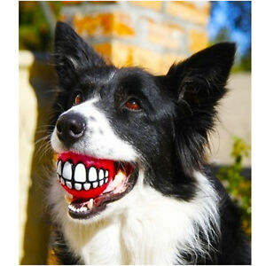 GRINZ-BALL-MEDIUM-Funny-Smile-Dog-amp-Puppy-Rubber-Treat-amp-Fetch-Ball-Toy-FLOATS