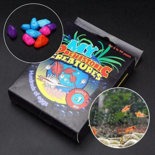 Aquarium Marine Sea Monkeys Live Ocean Monkey Tank Habitat New Aquarium Toy Q4G9