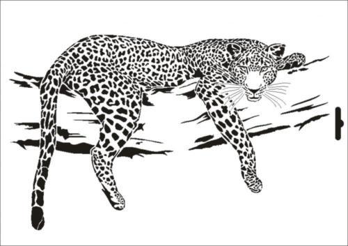 Stencil W-001 Leopard ~ UMR Wall Stencil