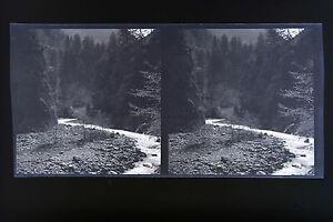 Suisse Paysages Ragaz Tamina6 Photos stéréo négatifssur film souple 1911 - France - Type: Procédés anciens Authenticité: Tirage original - France