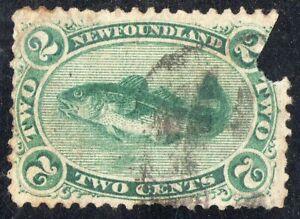 Newfoundland-Sc-24-Used